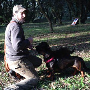 Le caveur et ses chiens